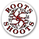 Tree Surgeon & Surgery in Guildford, Kingston, Richmond | Roots & Shoots